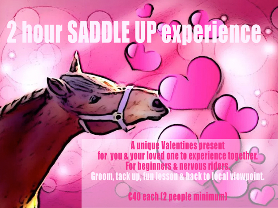Go horse riding with our 2 hour saddle up experience the for A perfect valentines gift for her