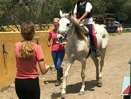 Endurance riding trial
