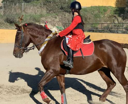 Kids riding lessons Estepona