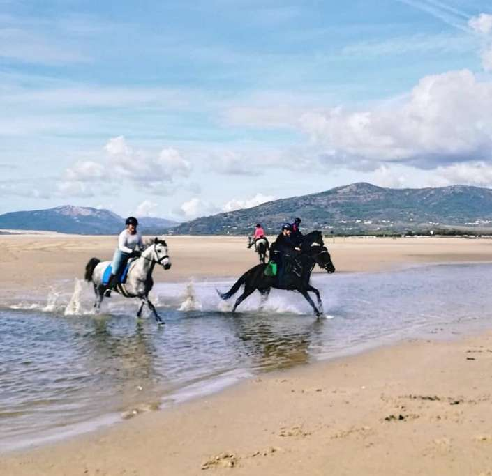 ranch Siesta Los Rubios beach riding in Tarifa on a day trip