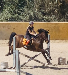 Ranch Siesta Los Rubios jumping lessons in Estepona