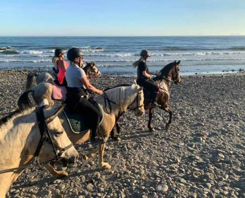 Beach and bar ride with Ranch Siesta Los Rubios horse riding stables in Estepona