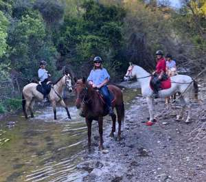 Ranch Siesta Los Rubios estepona ruta de caballos horse riding mountain hack in Estepona into the Sierra Bermeja