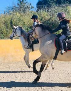 Pairs riding practice dressage at Ranch Siesta Los Rubios in Estepona riding stables