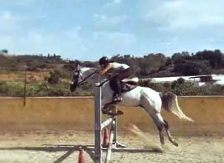 Jumping lessons at Ranch Siesta Los Rubios, Estepona