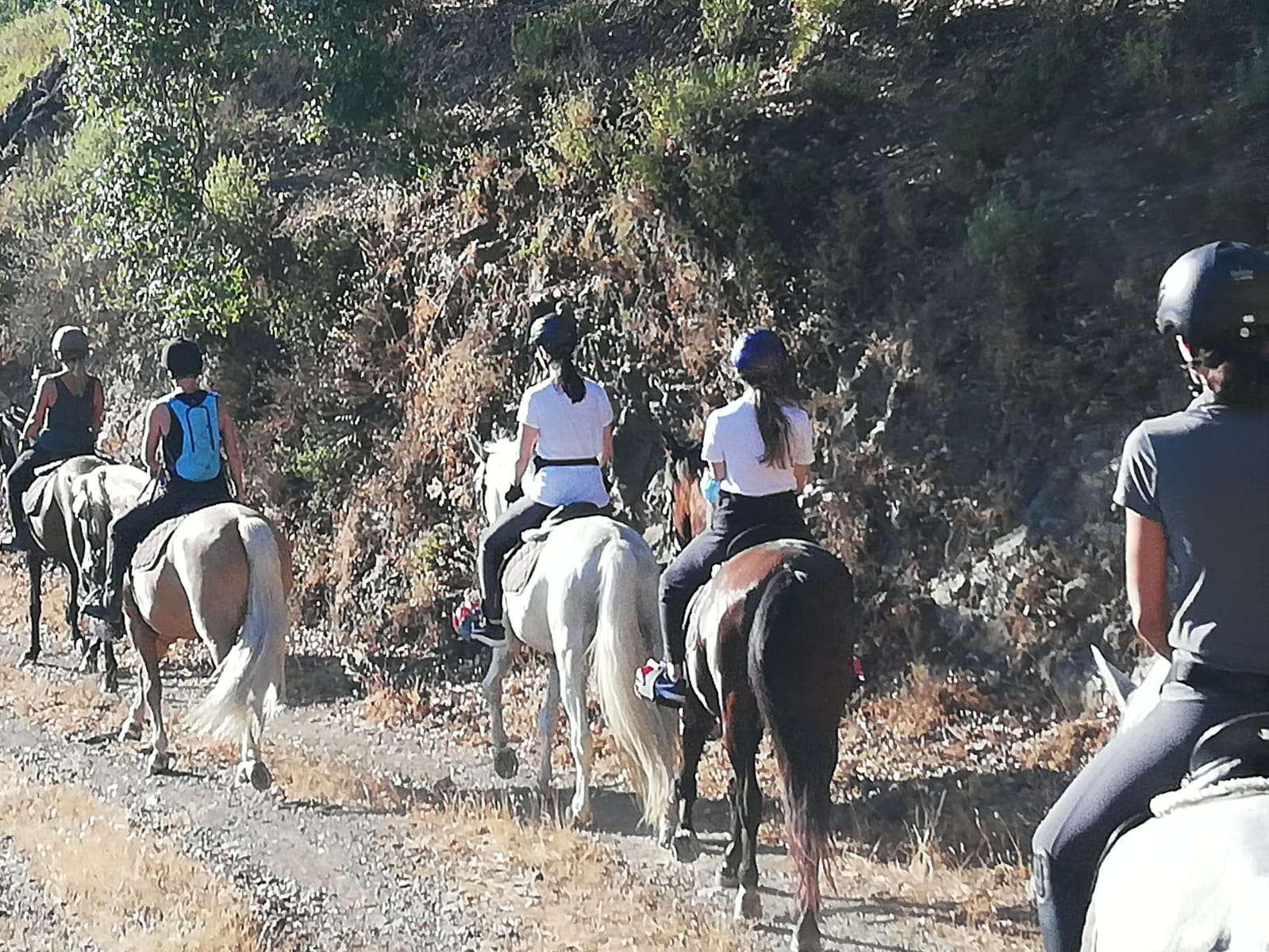 Hacking horses Estepona with Ranch Siesta Los Rubios riding stables