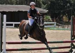 Showjumping competition Ranch Siesta Los Rubios