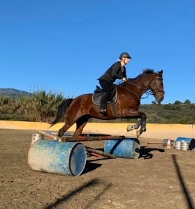 Jumping lesson adult riding lessons at Ranch Siesta Los Rubios Dec 20
