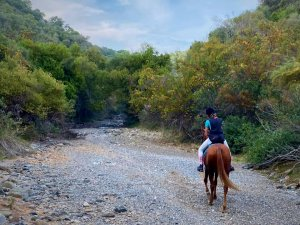Mountain horse riding Estepona Ranch Siesta Los Rubios